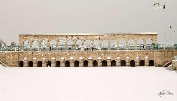 Beyşehir Gölü'nde Martıların Ekmek Kavgası