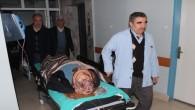 Minibüsün Çarptığı Çoban Kadın Yaralandı